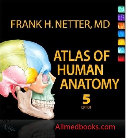 download netter atlas pdf