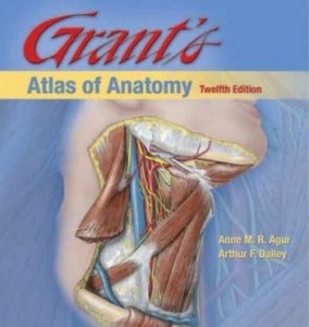 grant's atlas of anatomy pdf
