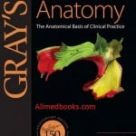 Download gray's clinical anatomy pdf