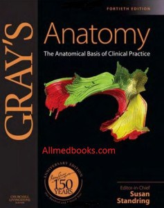 download grays clinical anatomy pdf
