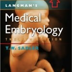 Download Langman Embryology pdf