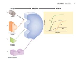 katzung pdf diagrams