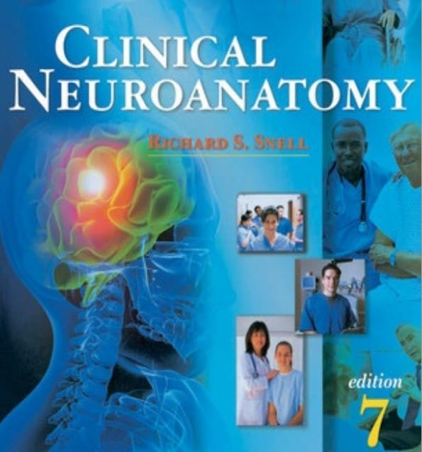 download snell neuro anatomy pdf