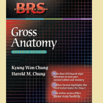 Download BRS Anatomy pdf free + Buy Hard Copy