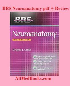 brs neuroanatomy pdf