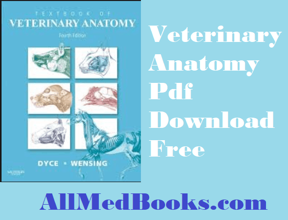 Veterinary Anatomy Pdf
