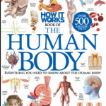 The Human Body Book Pdf Download Free